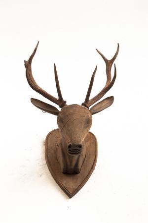 Wooden deer head on white wall