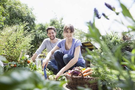 cowering: Smiling couple gardening in vegetable patch