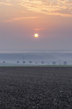 Germany, Lower Saxony, Koenigslutter, Sunrise in autumn, fog LANG_EVOIMAGES