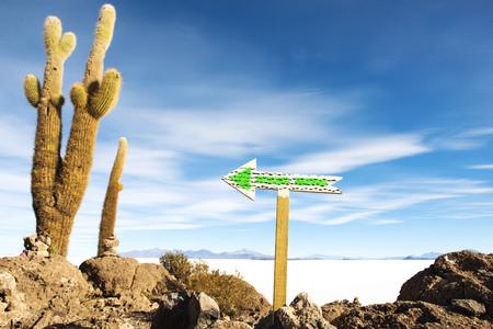 Bolivia, Potosi, Arrow sign at Uyuni Salt Flats