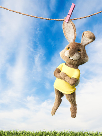 Easter bunny hanging on clothes line with arms crossed