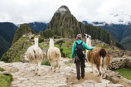 Peru, Machu Picchu region, Female traveler looking at Machu Picchu citadel and Huayna mountain with three llamas LANG_EVOIMAGES