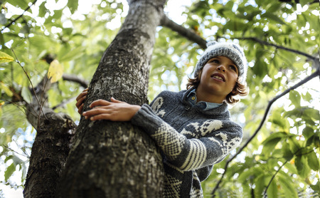 Portrait of boy wearing autumn fashion climbing on a tree