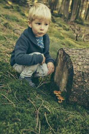cowering: Little boy crouching in forest, looking at honey fungi