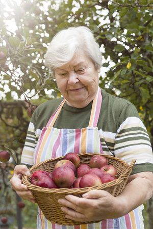 Portrait of senior woman with wickerbasket of apples