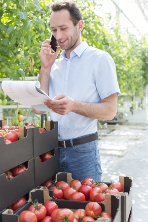 Smiling man with clipboard on the phone in greenhouse with boxes of tomatoes