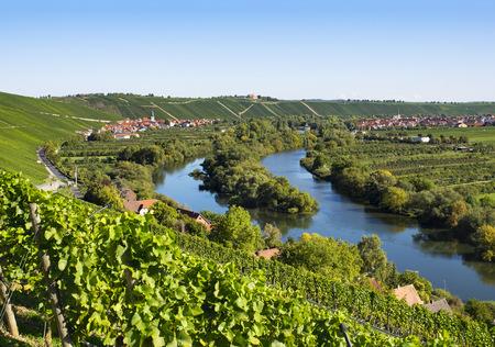 Germany, Lower Franconia, Vineyard near Escherndorf and Nordheim
