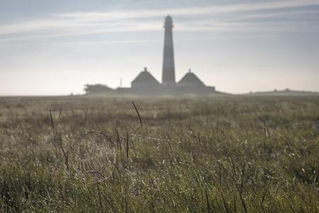 westerheversand: Westerheversand Lighthouse, spider web in the foreground