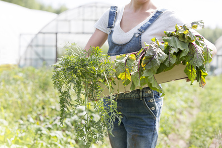 Woman holding crate with vegetables LANG_EVOIMAGES