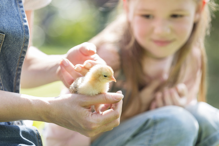 cowering: Mother and daughter with little chick outdoors LANG_EVOIMAGES