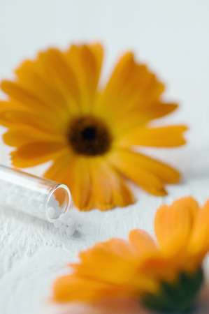 Tube and globules, calendula blossoms LANG_EVOIMAGES