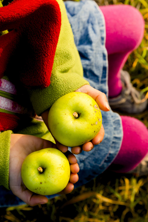 Little girl holding two green apples, close-up