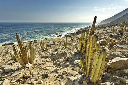 secluded: Peru, Arequipa, Ocona, coastal landscape at Panamericana Sur S1