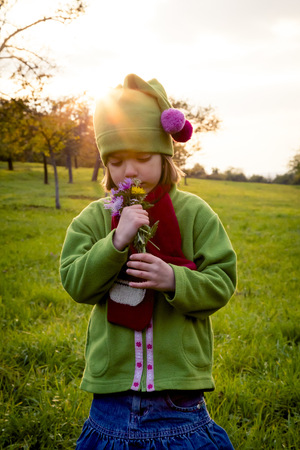 lighted: Germany, Baden-Wuerttemberg, little girl on a meadow smelling flowers at evening twilight
