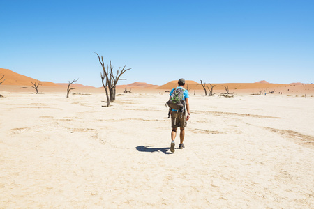 secluded: Namibia, Namib Desert, man with backpack walking through Deadvlei