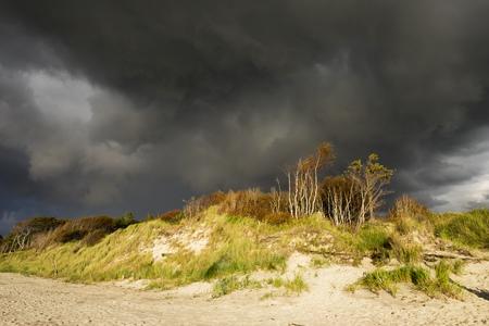 mecklenburg western pomerania: Germany, Mecklenburg-Western Pomerania, rain clouds over Baltic Sea beach in Born auf dem Darss