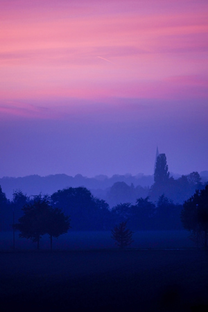 alluvial: Germany, North Rhine-Westphalia, Minden, twilight in alluvial forest LANG_EVOIMAGES