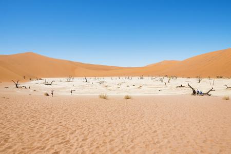 Namibia, Namib Desert, dead trees in Deadvlei