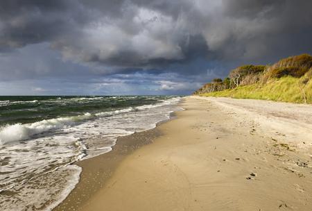 mecklenburg western pomerania: Germany, Mecklenburg-Western Pomerania, Baltic Sea beach in Born auf dem Darss