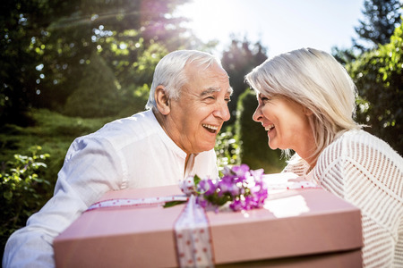 Happy elderly couple with large present outdoors LANG_EVOIMAGES