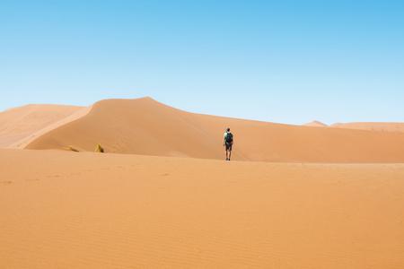Namibia, Namib Desert, Sossusvlei, Man  walking through the dunes