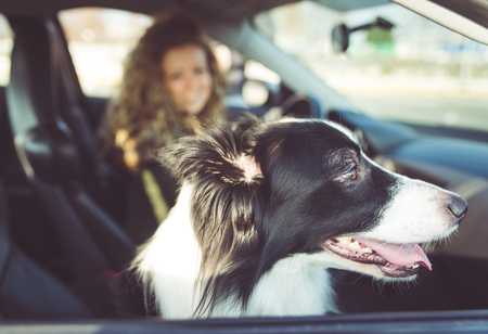 milánó: Woman driving car, dog sitting on passenger seat
