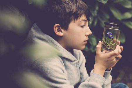 Profile of a boy watching pansy in a glass LANG_EVOIMAGES