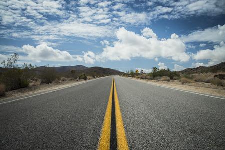 joshua tree national park: USA, California, road in Joshua Tree National Park