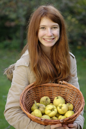 membrillo: Portrait of smiling girl holding wickerbasket with quinces