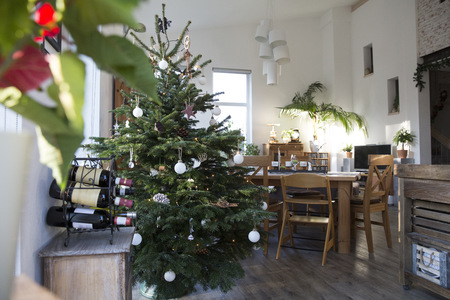 dining table and chairs: Home interior with Christmas tree