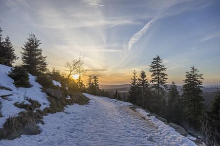 brocken: Germany, Saxony-Anhalt, Harz National Park, path in winter LANG_EVOIMAGES