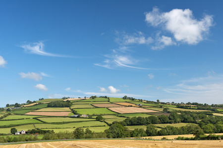 patchwork: UK, Wales, Fields and meadows near Brecon