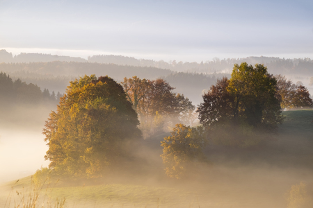 Germany, Bavaria, Pfaffenwinkel, Aidling, Aidlinger Hoehe, morning fog in the morning LANG_EVOIMAGES