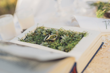 marrying: Two wedding rings lying on moss in a prepared book