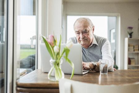 Portrait of senior man using laptop at home LANG_EVOIMAGES