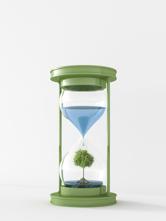 3D Rendering, tree on rock in hourglass with water