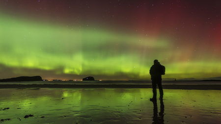 Scotland, East Lothian, silhouette of man standing on Seacliff Beach watching Northern lights