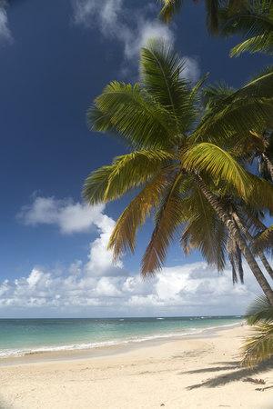Dominican Republic, Peninsula Samana, Beach of Las Terrenas