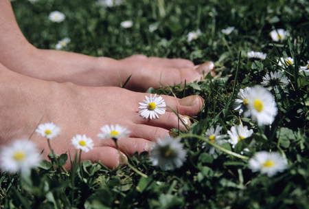 Feet On Grass With Daisy Flowers, Close-Up LANG_EVOIMAGES