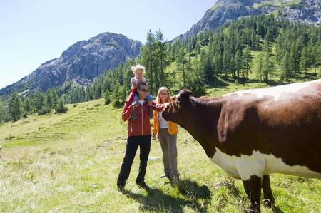 chordates: Austria, Salzburger Land, Couple With Daughter (6-7) Stroking Cattle LANG_EVOIMAGES