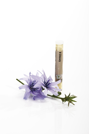 Tube With Bach Flower Stock Remedy, Chicory (Cichorium Intybus) LANG_EVOIMAGES