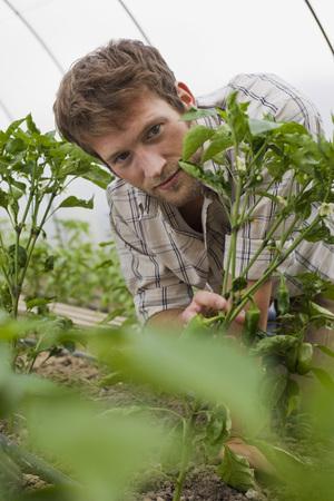 Man In Greenhouse, Portrait