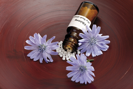 Bottle With Bach Flower Stock Remedy, Chicory (Cichorium Intybus), Elevated View