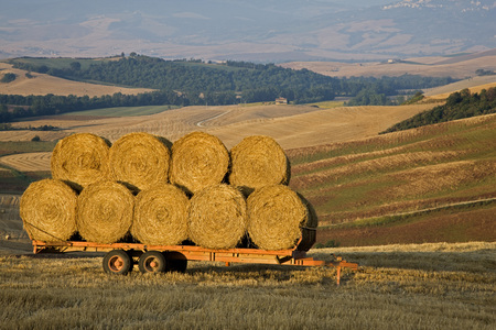 secluded: Italy, Tuscany, Bales Of Straw On Trailer