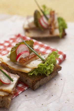 Sandwich With Roast Pork,Crust,Radish And Chives,Elevated View