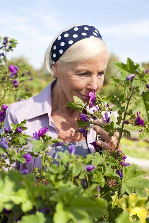 Germany,Saxony,Senior Woman Smelling The Flower