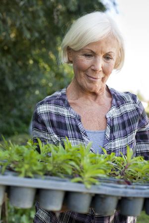 Alemania, sajonia, mujer mayor, con, planta en conserva, en, el, granja