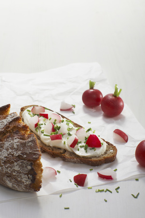 Curd Cheese On Rye Bread With Radish Slice And Garnished