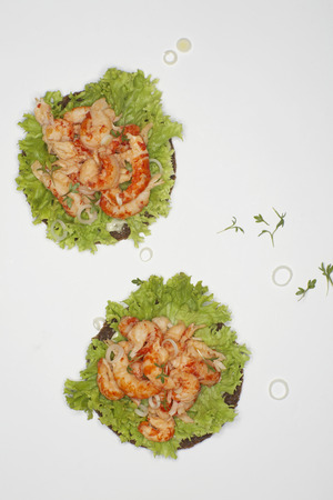 Crayfish On Rye Bread With Salad Against White Background LANG_EVOIMAGES