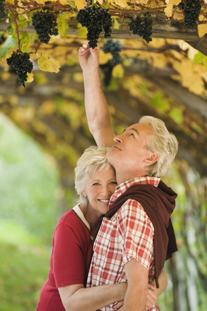 Italy,South Tyrol,Mature Couple In Vineyard